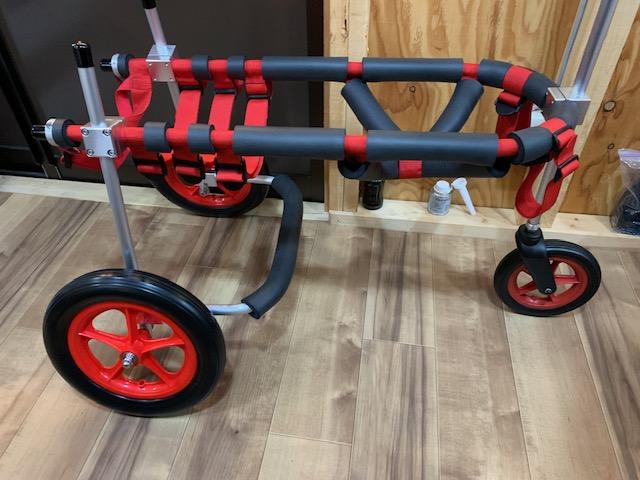 四国の大型犬 てんちゃんの犬の車椅子