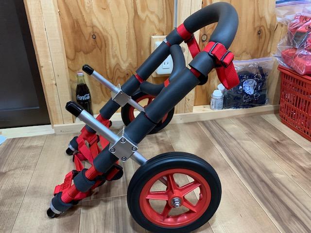 佐賀県のコーギー 走ちゃんの犬の車椅子