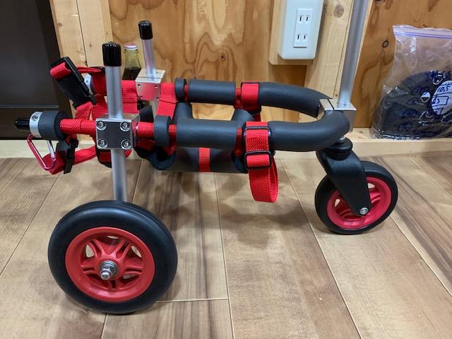 愛知県のチワワ 虎鉄ちゃんの犬の車椅子