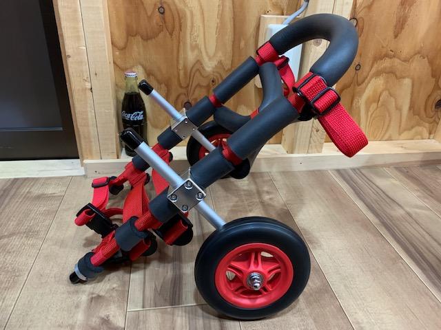 千葉県のダックスフンドとチワワのミックス 空(くう)ちゃんの犬の車椅子