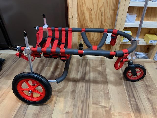 大阪府のラブラドールレトリーバー ハッピーちゃんの犬の車椅子