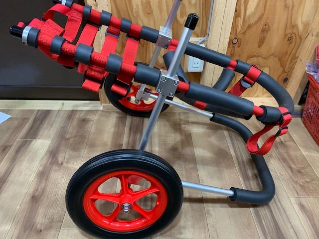 愛知県のラブラドールレトリーバー RARAⅡ(ララ)ちゃんの犬の車椅子