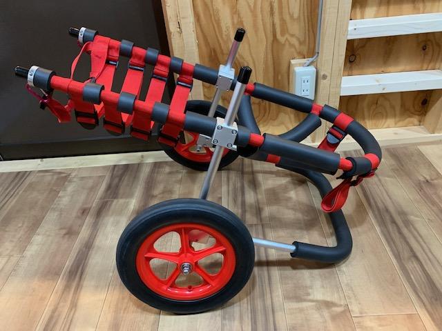 静岡県のラフ コリー ローラちゃんの犬の車椅子
