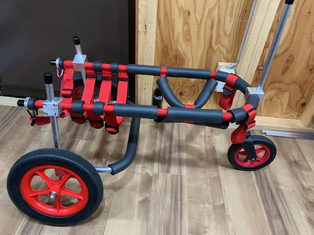 大阪府のラブラドールレトリーバー ゆずちゃんの犬の車椅子