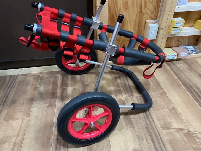千葉県のラブラドールレトリーバー ビーゴちゃんの犬の車椅子