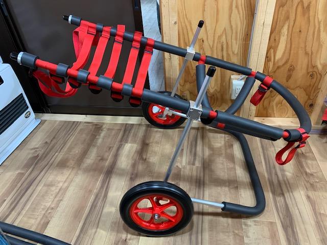 長野県のバーニーズマウンテンドッグ JET(ジェット)ちゃんの犬の車椅子