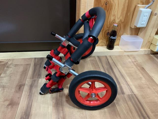兵庫県のパグ 宙(くう)ちゃんの犬の車椅子