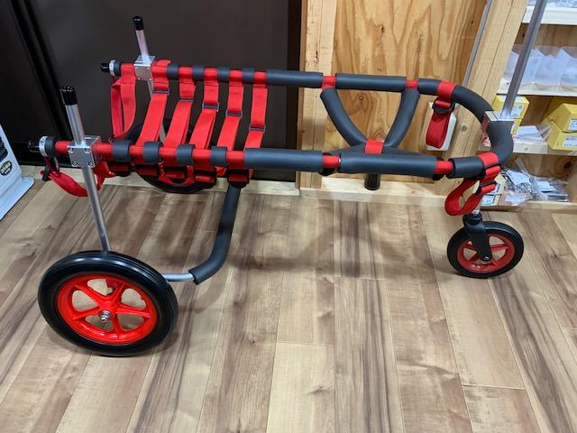 北海道のバーニーズマウンテンドッグ バロンちゃんの犬の車椅子