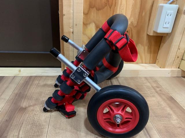 鹿児島県のミニチュアダックスフンド ゆらちゃんの犬の車椅子