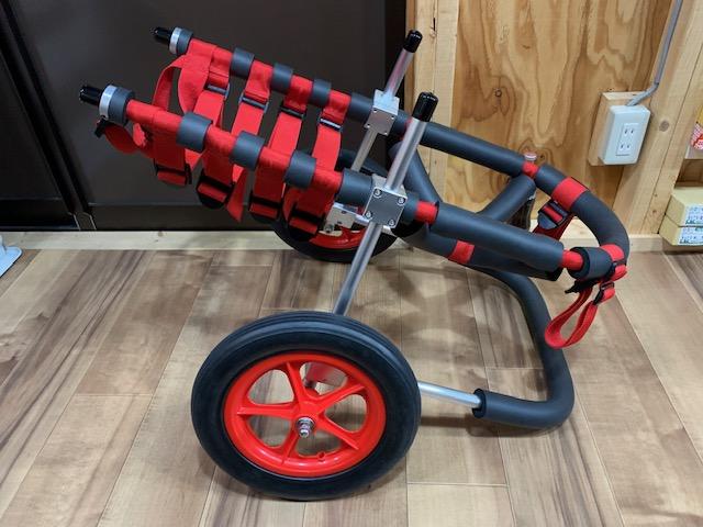 千葉県のゴールデンレトリーバー ブブちゃんの犬の車椅子