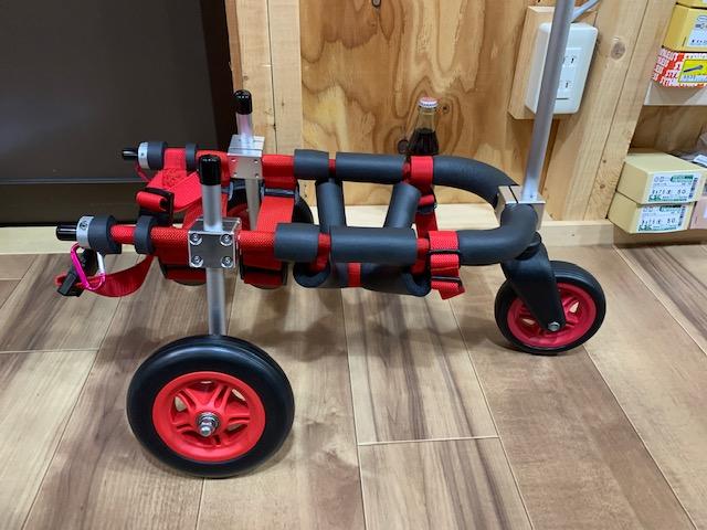 埼玉県のミニチュアダックスフンド リンクちゃんの犬の車椅子