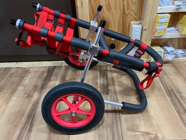 愛知県のゴールデンレトリーバー ミルキーちゃんの犬の車椅子